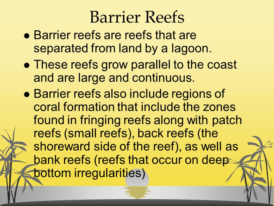 Barrier Reefs Barrier reefs are reefs that are separated from land by a lagoon. These reefs grow parallel to the coast and are large and continuous.