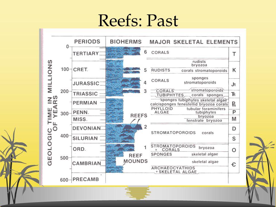 Reefs: Past