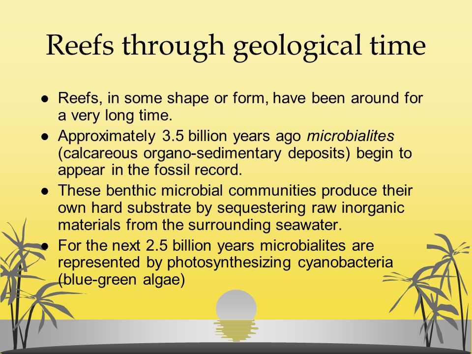 Reefs through geological time