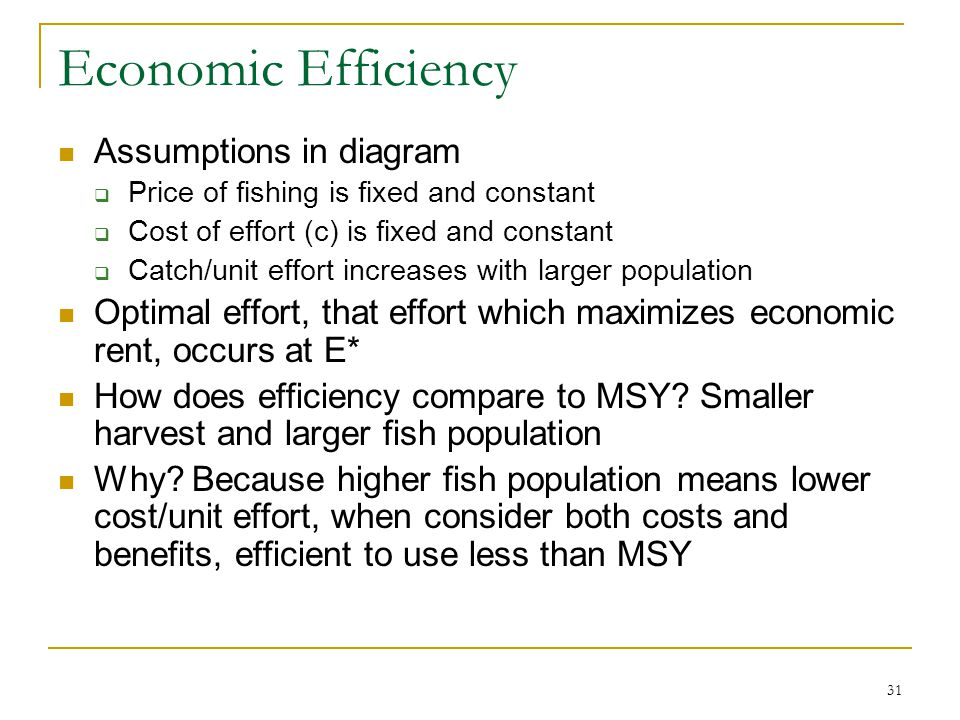 Economic Efficiency Assumptions in diagram