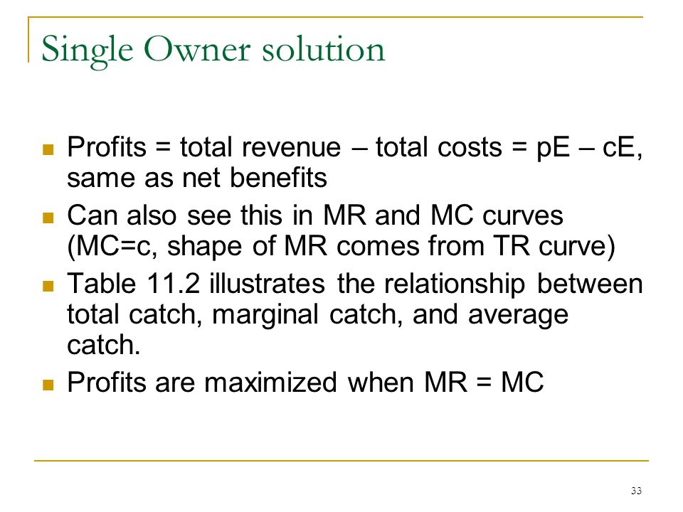 Single Owner solution Profits = total revenue – total costs = pE – cE, same as net benefits.