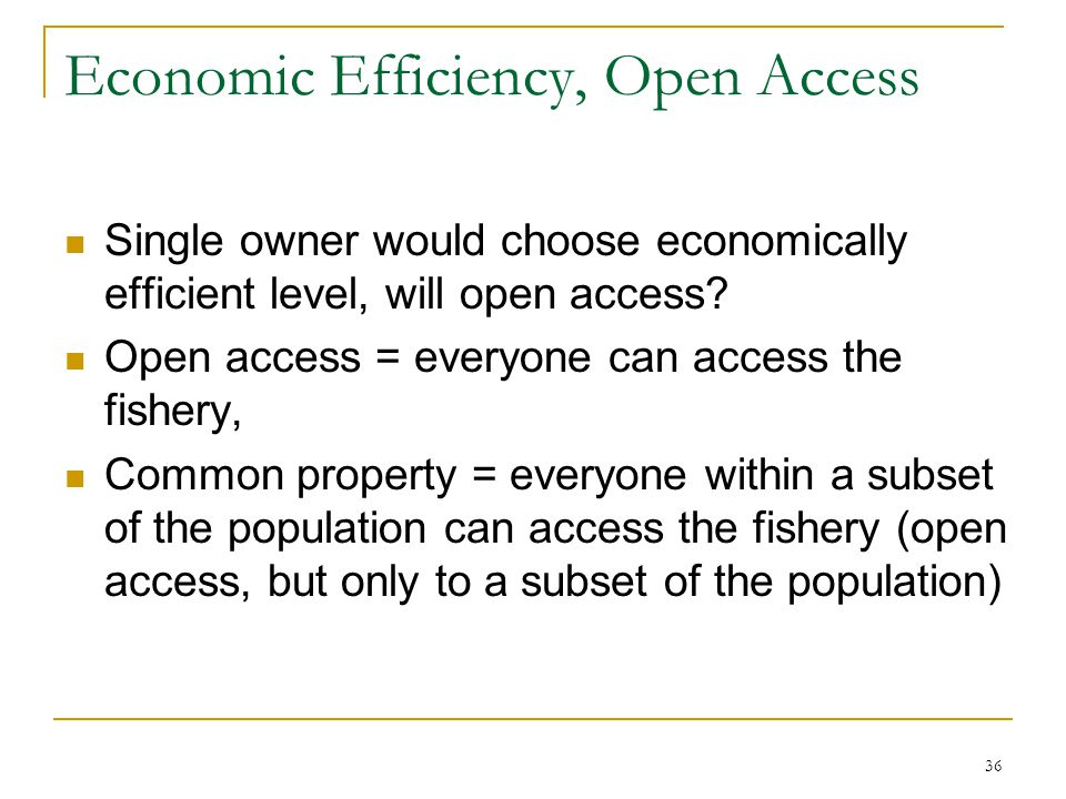 Economic Efficiency, Open Access