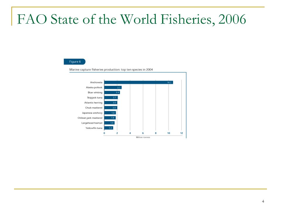 FAO State of the World Fisheries, 2006