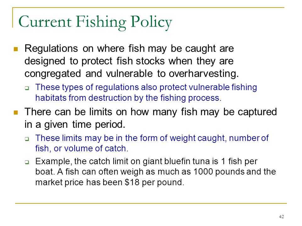 Current Fishing Policy