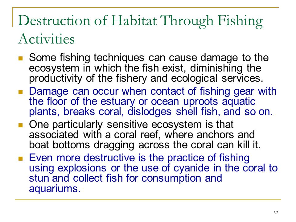 Destruction of Habitat Through Fishing Activities
