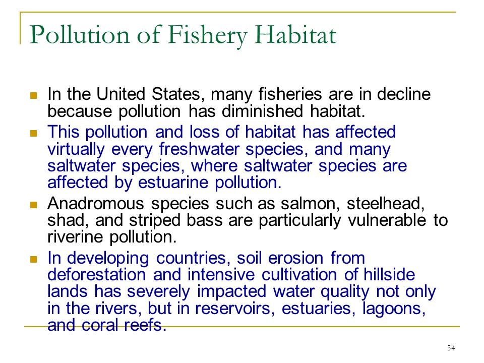 Pollution of Fishery Habitat