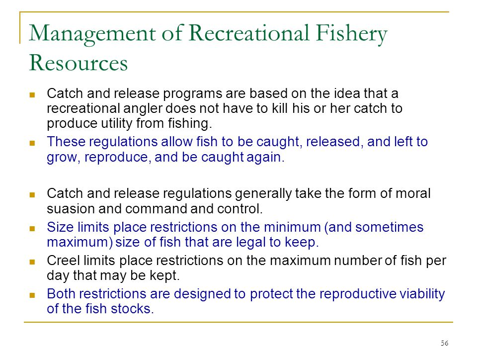 Management of Recreational Fishery Resources