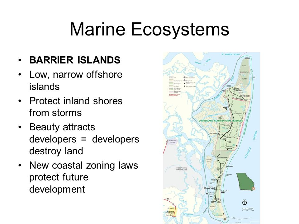 Marine Ecosystems BARRIER ISLANDS Low, narrow offshore islands