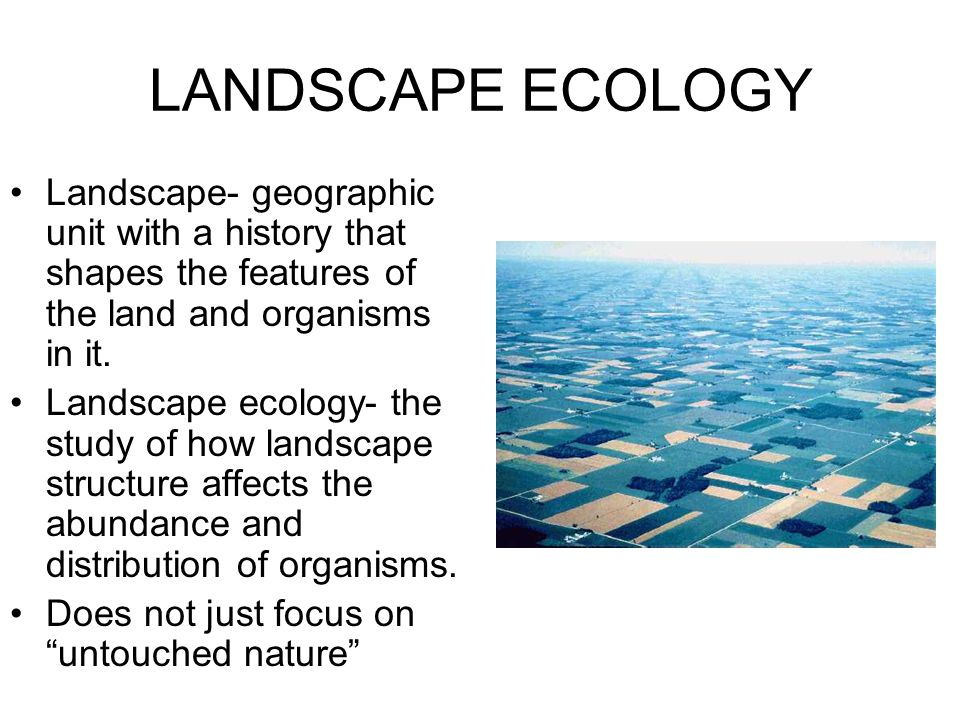 LANDSCAPE ECOLOGY Landscape- geographic unit with a history that shapes the features of the land and organisms in it.