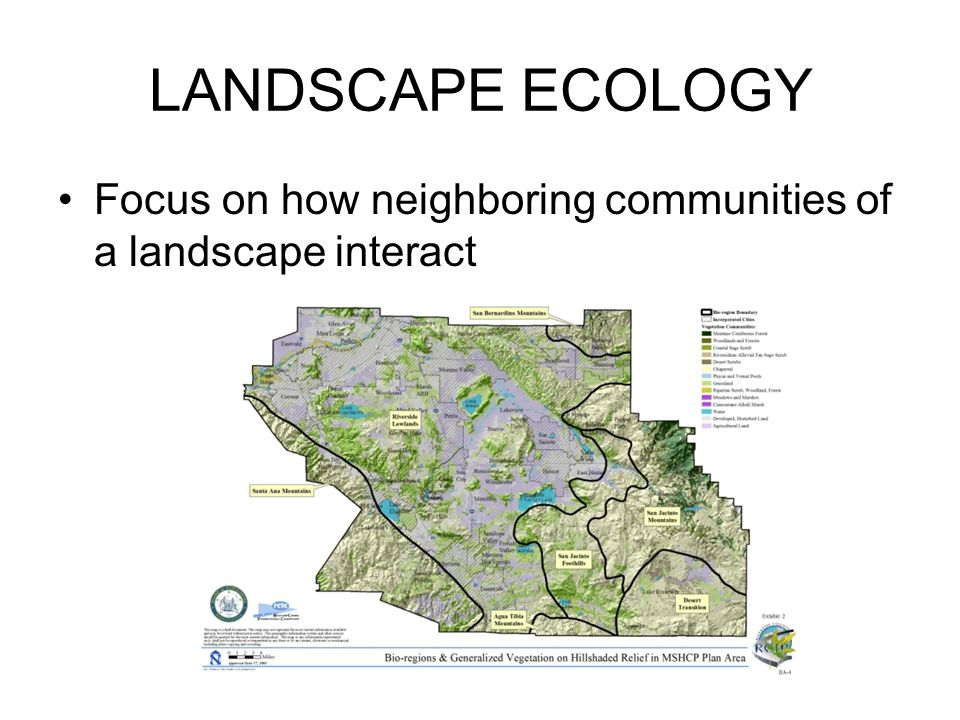 LANDSCAPE ECOLOGY Focus on how neighboring communities of a landscape interact