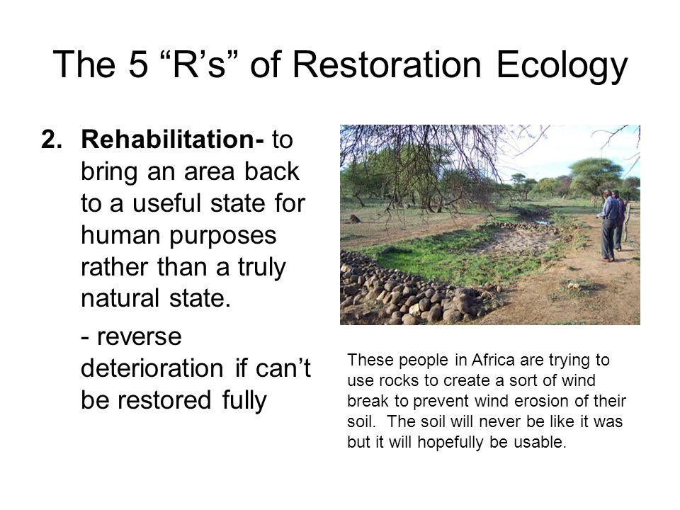 The 5 R's of Restoration Ecology