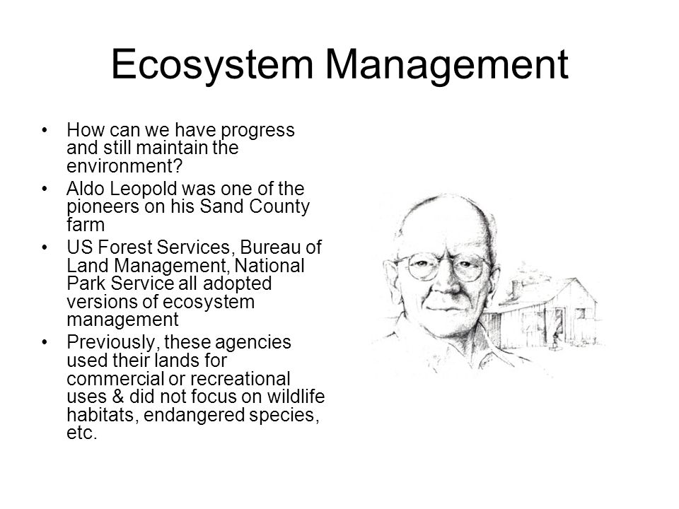 Ecosystem Management How can we have progress and still maintain the environment Aldo Leopold was one of the pioneers on his Sand County farm.