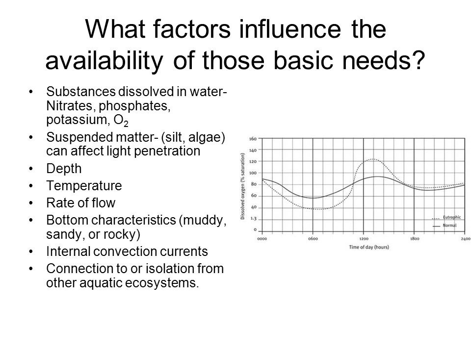 What factors influence the availability of those basic needs