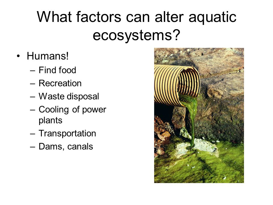 What factors can alter aquatic ecosystems