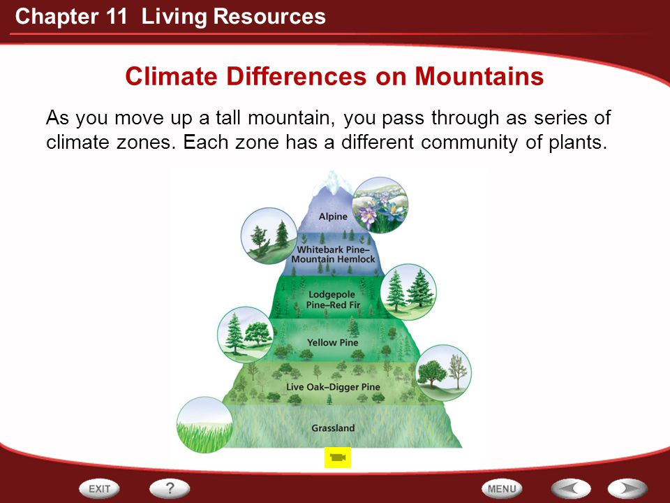 Climate Differences on Mountains