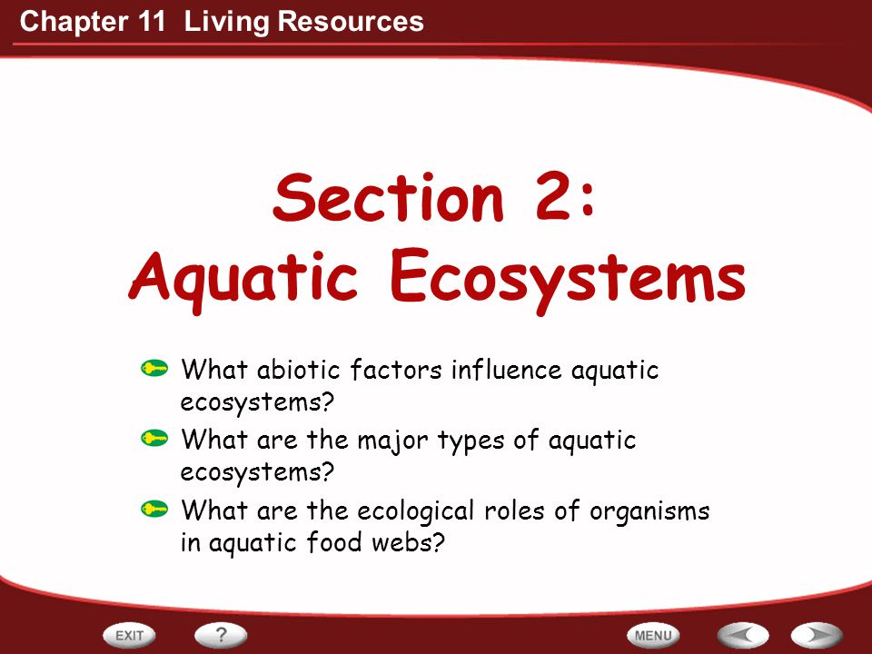 Section 2: Aquatic Ecosystems