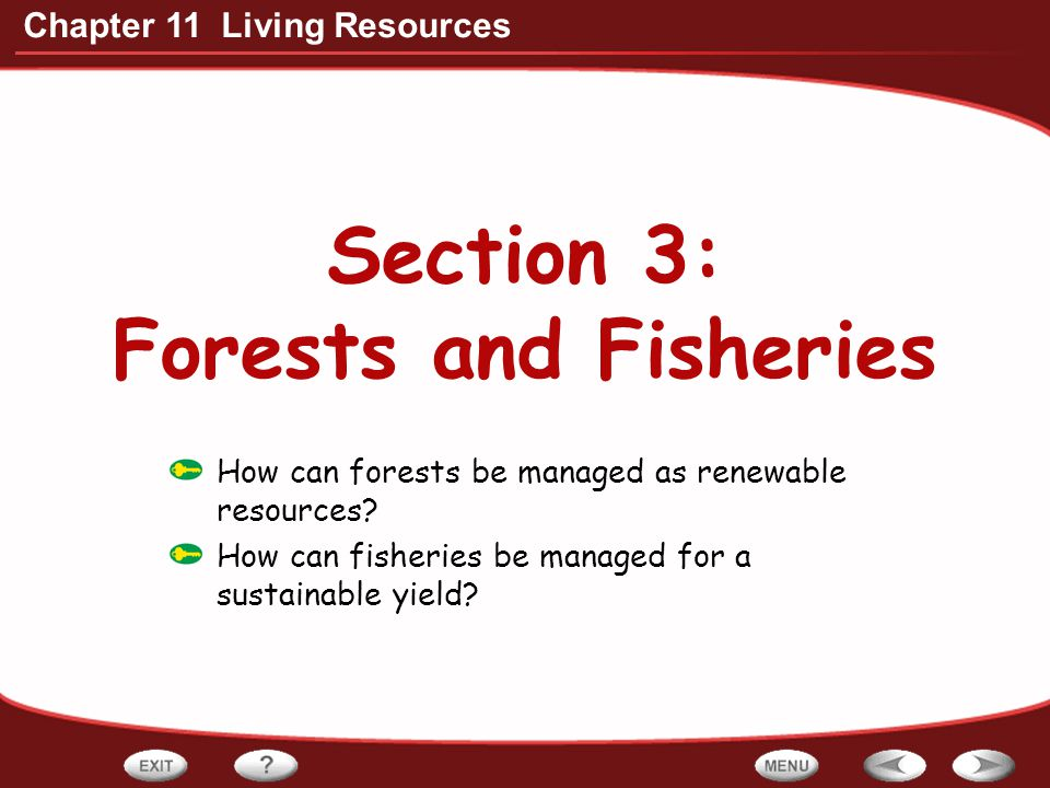 Section 3: Forests and Fisheries