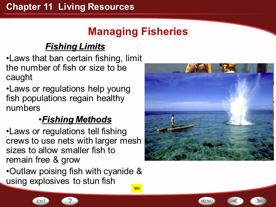 Managing Fisheries Fishing Limits