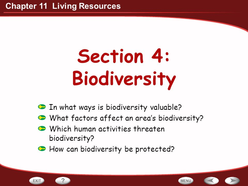Section 4: Biodiversity