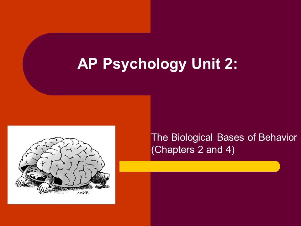 The Biological Bases of Behavior (Chapters 2 and 4)