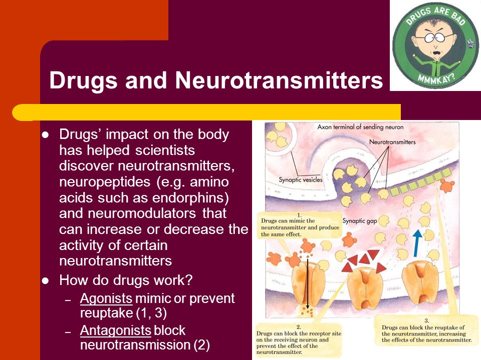 Drugs and Neurotransmitters