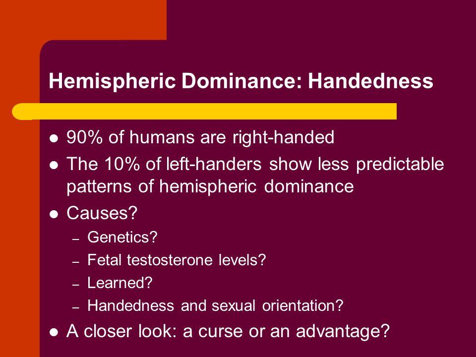 Hemispheric Dominance: Handedness