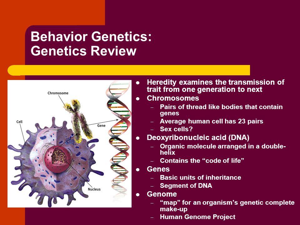 Behavior Genetics: Genetics Review