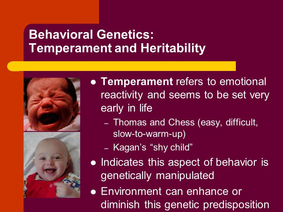 Behavioral Genetics: Temperament and Heritability