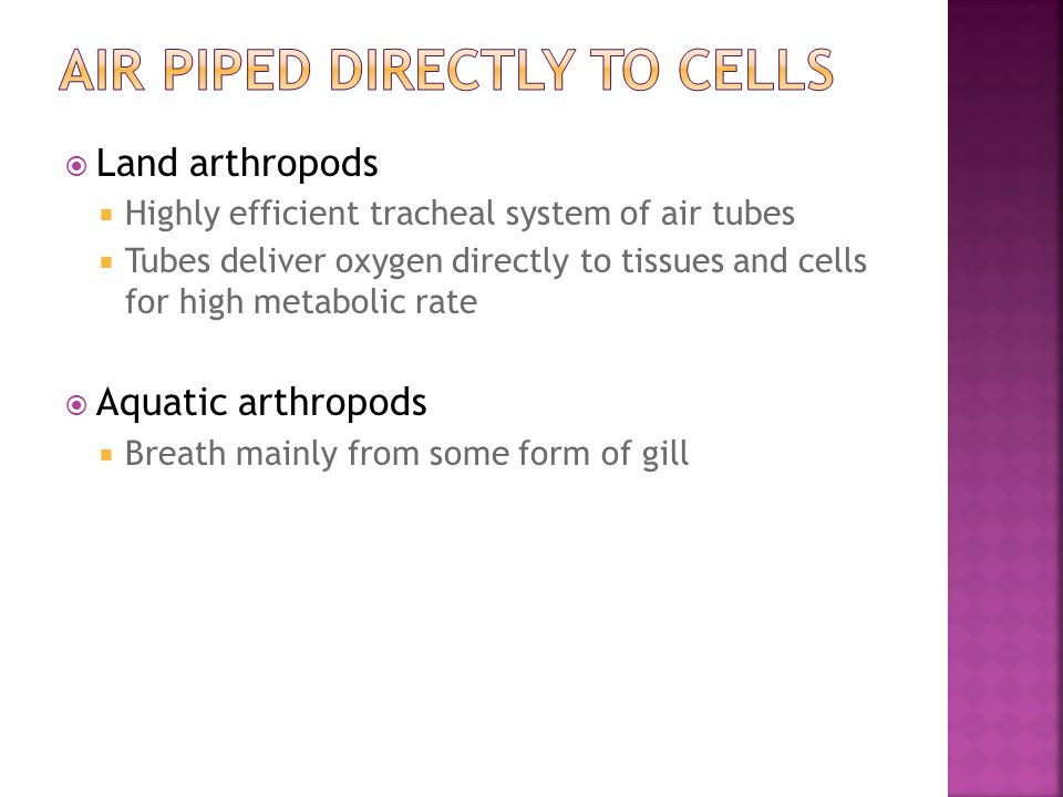 Air piped directly to cells