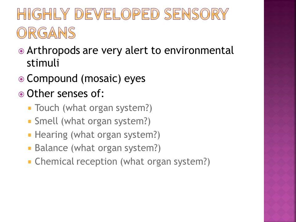 Highly developed sensory organs