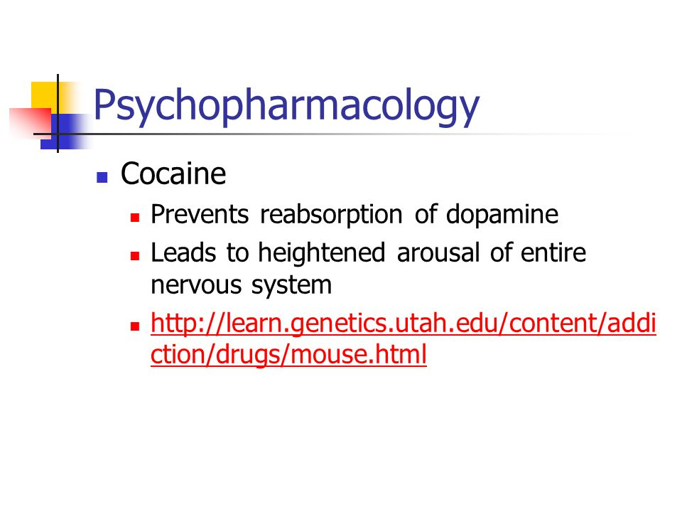 Psychopharmacology Cocaine Prevents reabsorption of dopamine