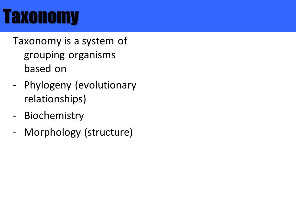 Taxonomy Taxonomy is a system of grouping organisms based on
