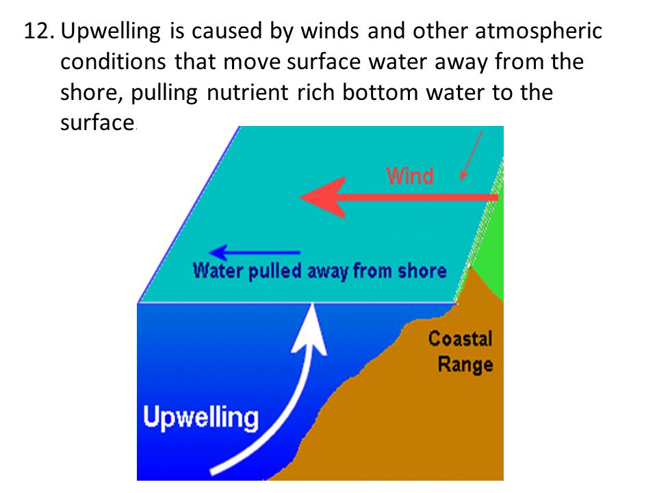 Upwelling is caused by winds and other atmospheric conditions that move surface water away from the shore, pulling nutrient rich bottom water to the surface.