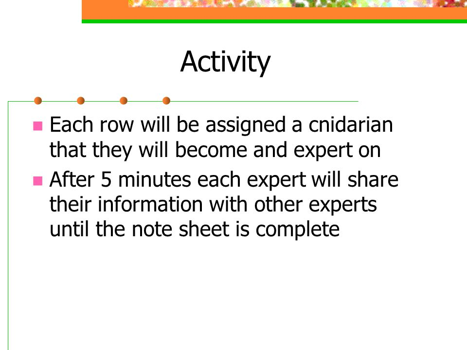 Activity Each row will be assigned a cnidarian that they will become and expert on.