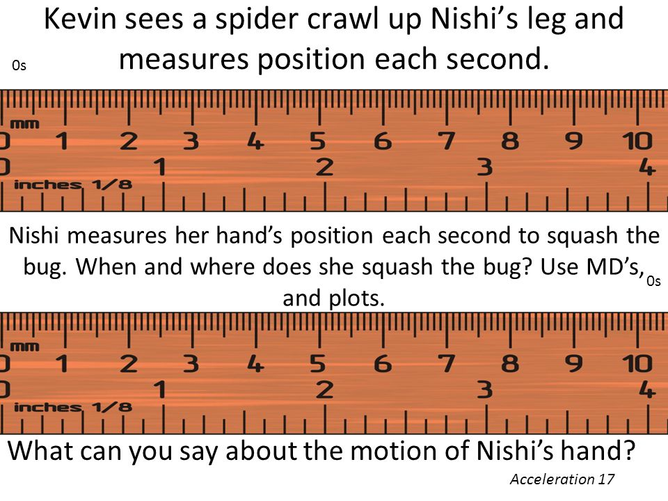Kevin sees a spider crawl up Nishi's leg and measures position each second.