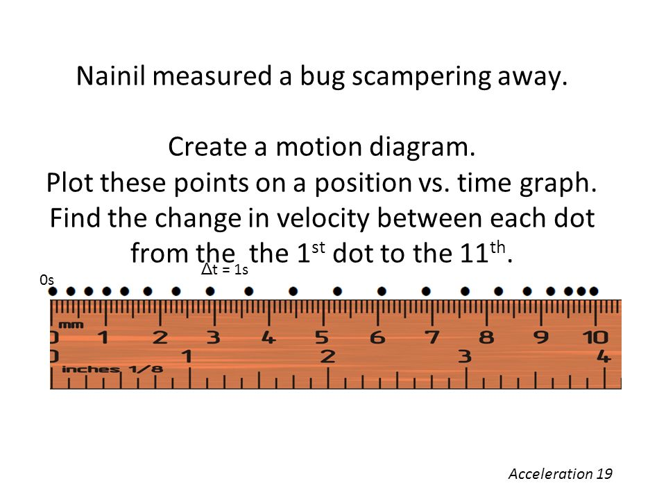 Nainil measured a bug scampering away. Create a motion diagram