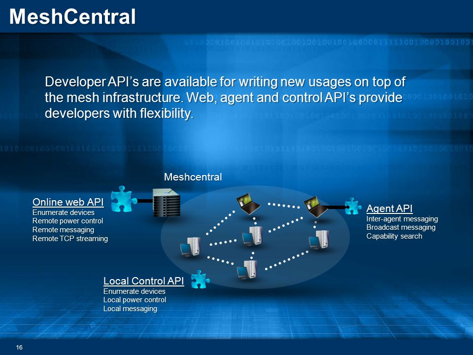 Developer API's are available for writing new usages on top of the mesh infrastructure. Web, agent and control API's provide developers with flexibility.