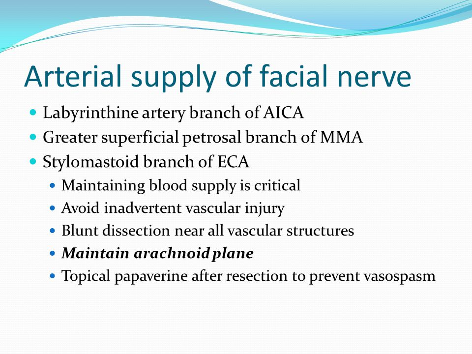 Arterial supply of facial nerve