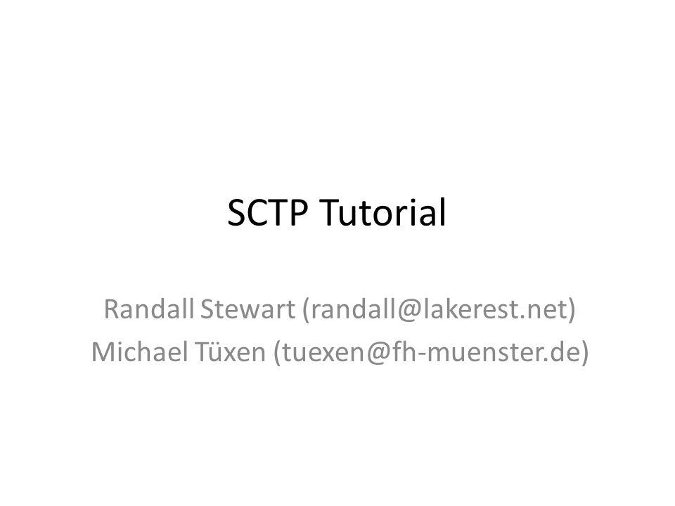 SCTP Tutorial Randall Stewart (randall@lakerest.net)