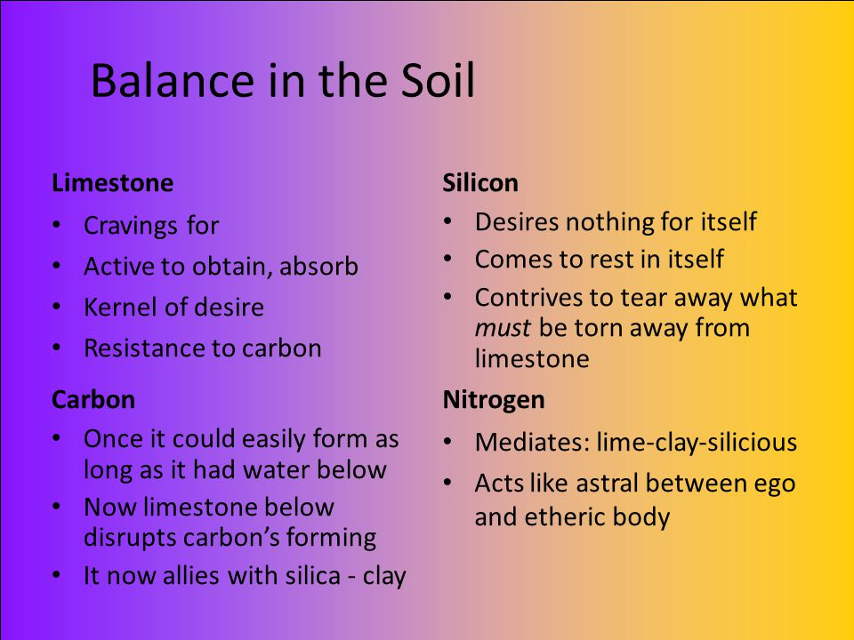 Balance in the Soil Limestone Silicon Cravings for