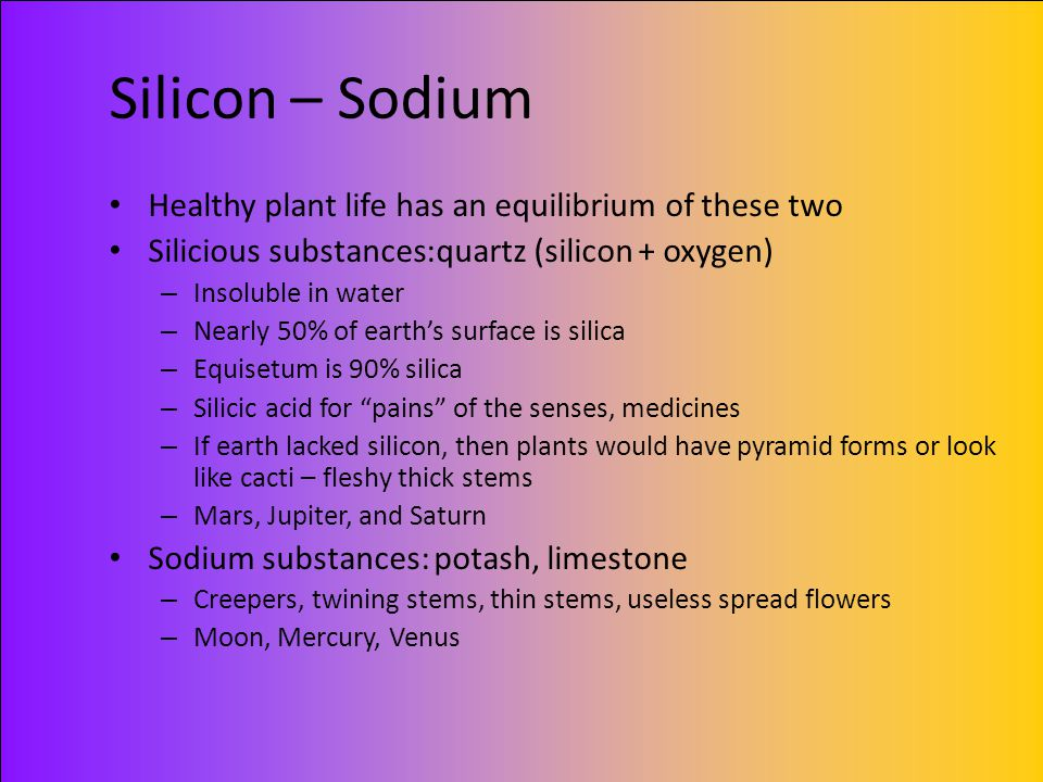 Silicon – Sodium Healthy plant life has an equilibrium of these two