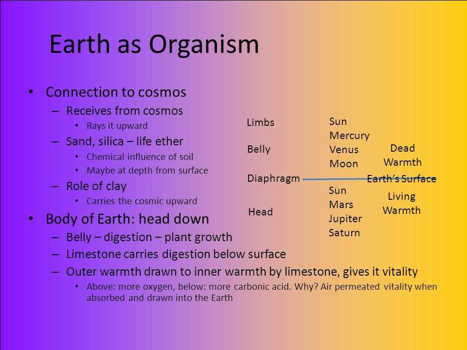 Earth as Organism Connection to cosmos Body of Earth: head down
