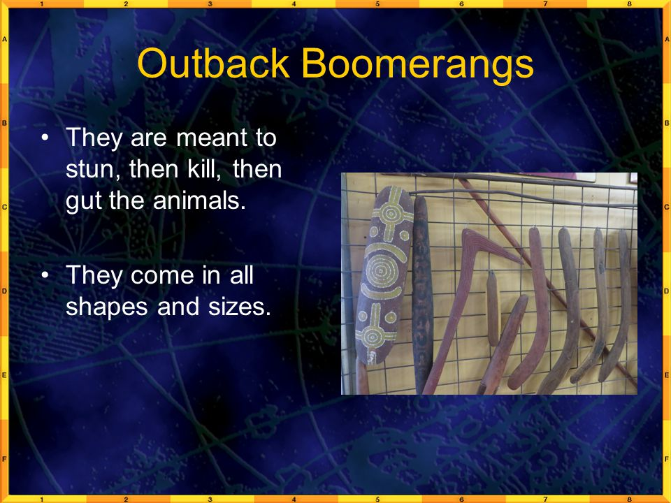Outback Boomerangs They are meant to stun, then kill, then gut the animals.