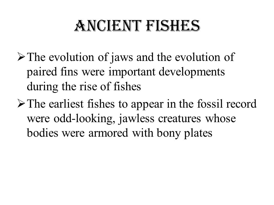 Ancient Fishes The evolution of jaws and the evolution of paired fins were important developments during the rise of fishes.