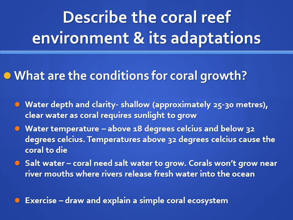 Describe the coral reef environment & its adaptations