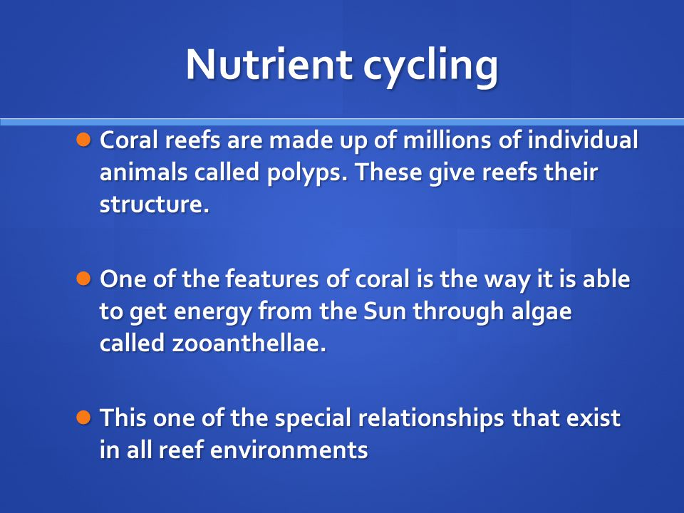 Nutrient cycling Coral reefs are made up of millions of individual animals called polyps. These give reefs their structure.