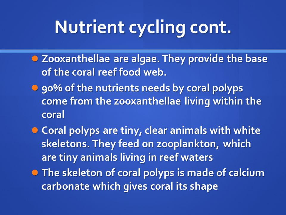 Nutrient cycling cont. Zooxanthellae are algae. They provide the base of the coral reef food web.