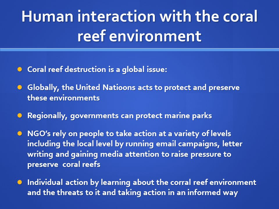 Human interaction with the coral reef environment