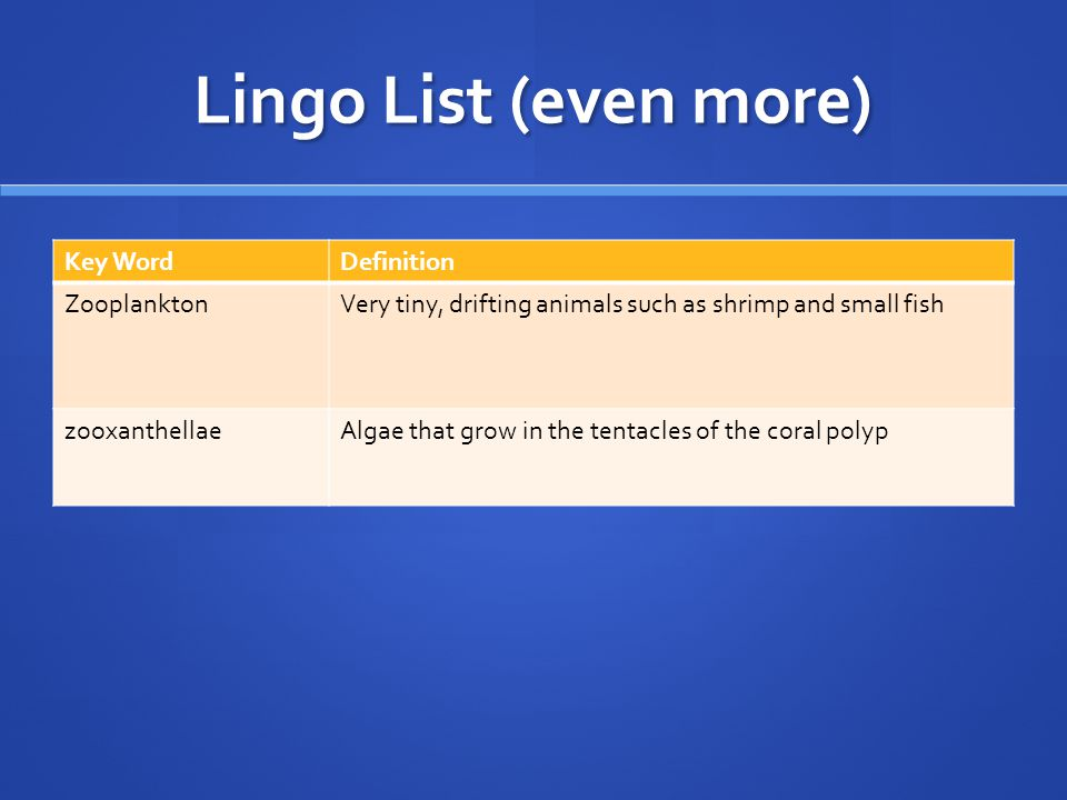 Lingo List (even more) Key Word Definition Zooplankton