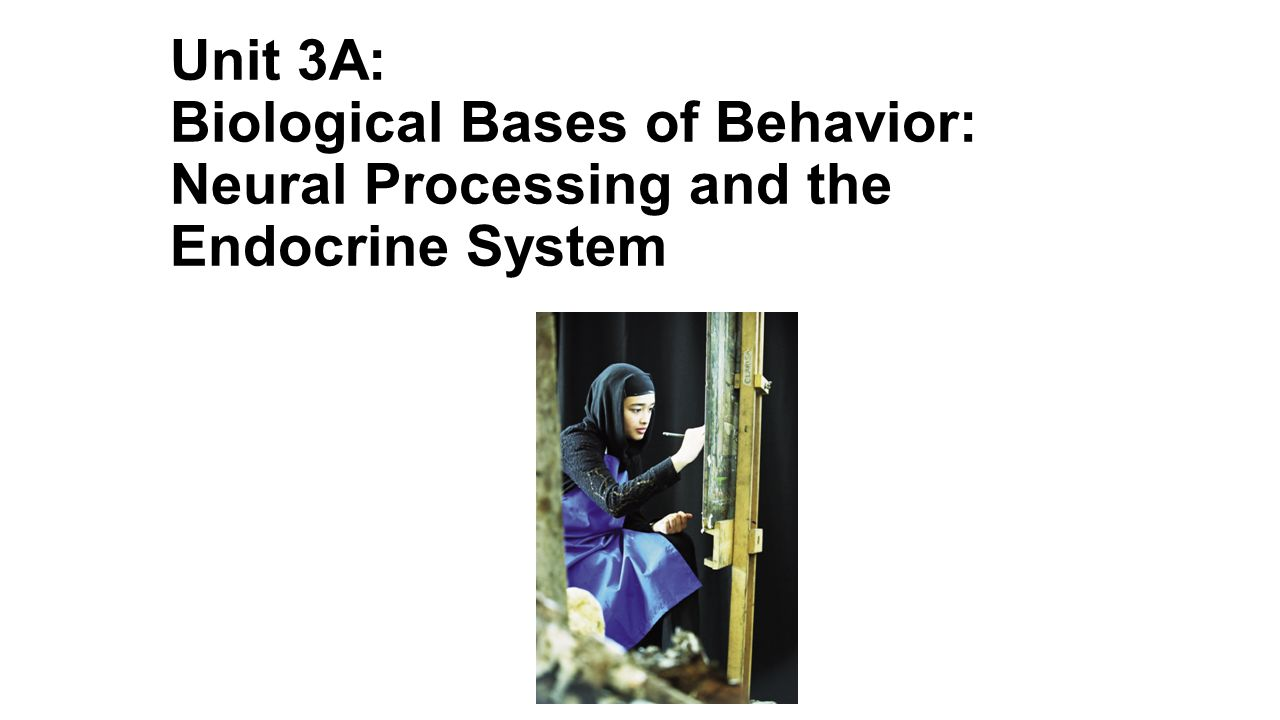Unit 3A: Biological Bases of Behavior: Neural Processing and the Endocrine System